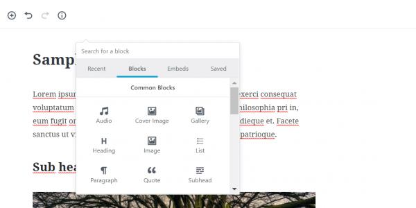 screenshot showing Gutenberg editor