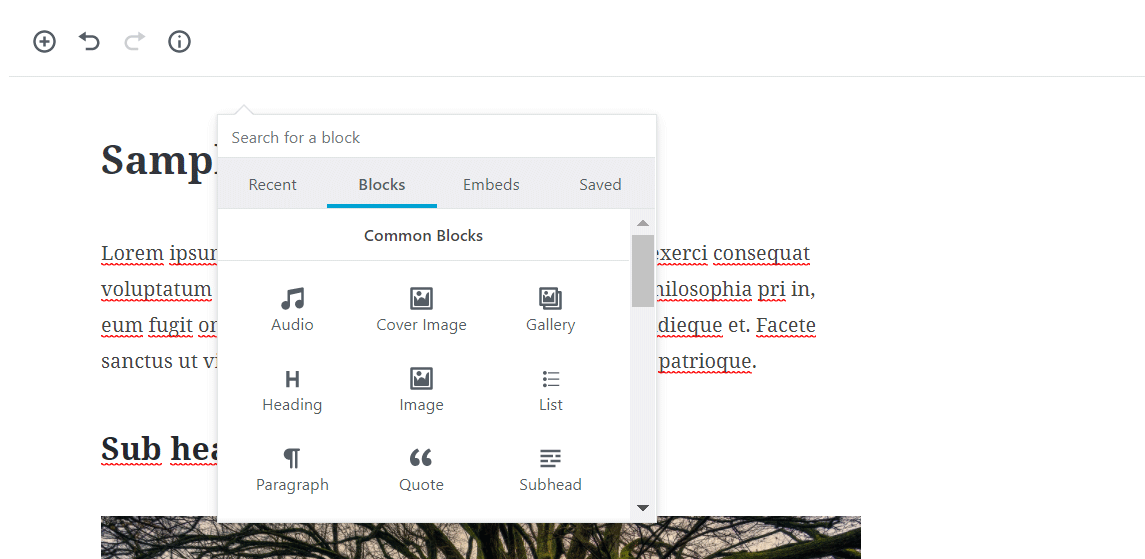 screenshot showing Gutenberg editor